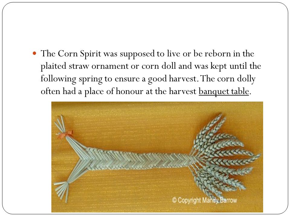The Corn Spirit was supposed to live or be reborn in the plaited straw ornament or corn doll and was kept until the following spring to ensure a good