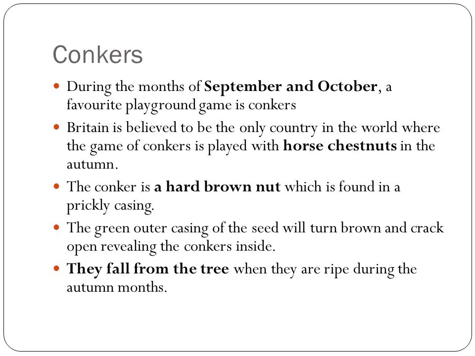 Conkers During the months of September and October, a favourite playground game is conkers Britain is believed to be the only country in the world whe