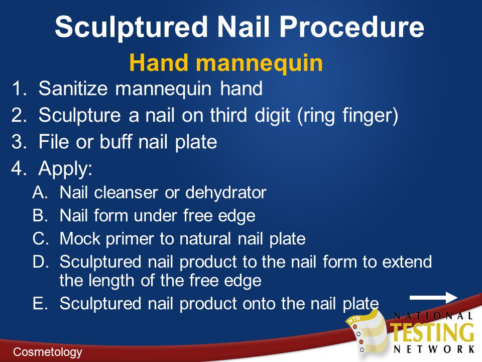 Sculptured Nail Procedure 1.Sanitize mannequin hand 2.Sculpture a nail on third digit (ring finger) 3.File or buff nail plate 4.Apply: A.Nail cleanser or dehydrator B.Nail form under free edge C.Mock primer to natural nail plate D.Sculptured nail product to the nail form to extend the length of the free edge E.Sculptured nail product onto the nail plate Cosmetology Hand mannequin
