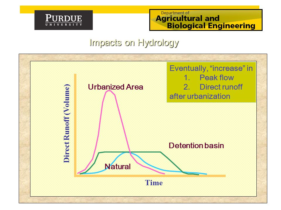 Time Direct Runoff (Volume) Urbanized Area Detention basin Natural Eventually, increase in 1.