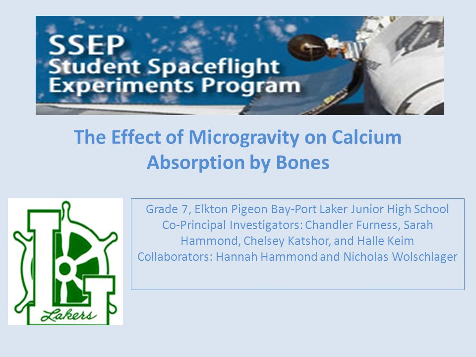The Effect of Microgravity on Calcium Absorption by Bones Grade 7, Elkton Pigeon Bay-Port Laker Junior High School Co-Principal Investigators: Chandler Furness, Sarah Hammond, Chelsey Katshor, and Halle Keim Collaborators: Hannah Hammond and Nicholas Wolschlager
