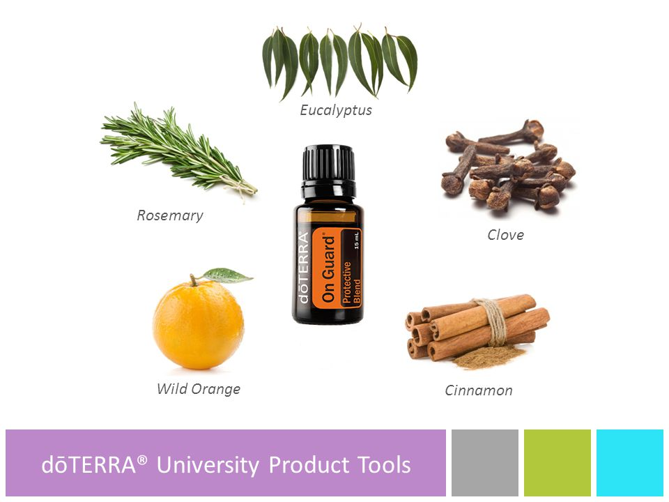 Rosemary Clove Wild Orange dōTERRA® Product Tools Eucalyptus dōTERRA® Product Tools dōTERRA® University Product Tools Cinnamon
