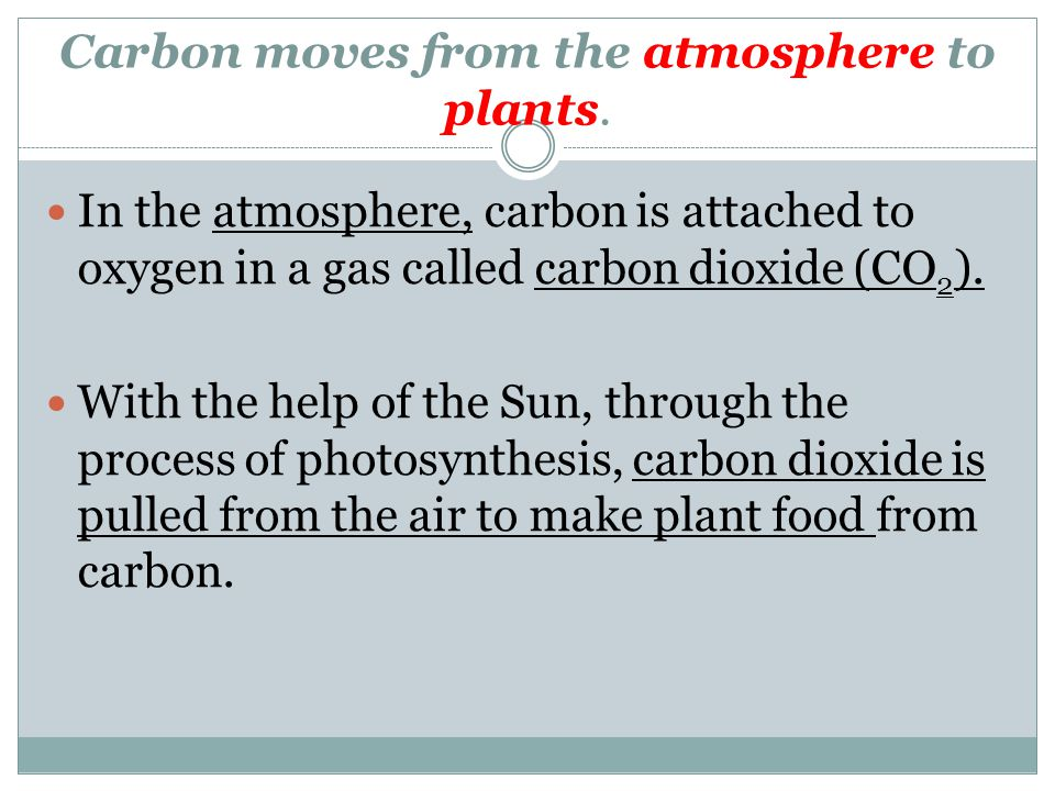 Carbon moves from the atmosphere to plants.