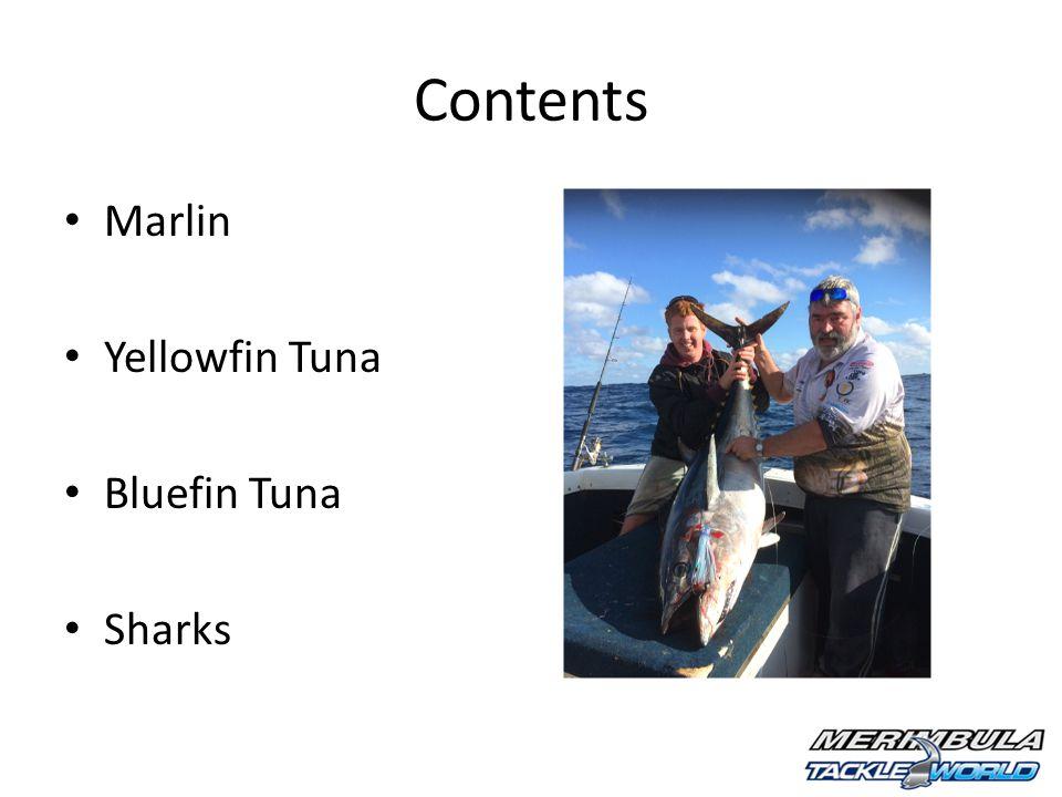 Contents Marlin Yellowfin Tuna Bluefin Tuna Sharks