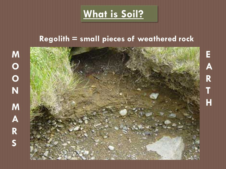 Soil Composition = what it's made of