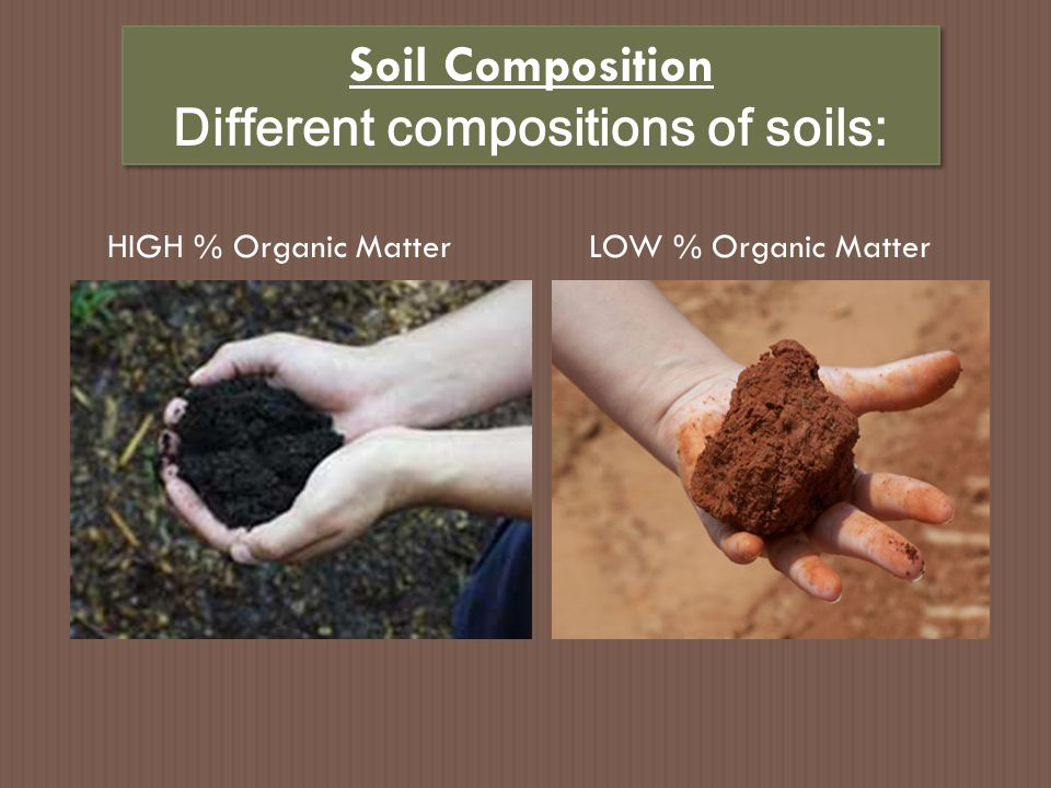 Soil Composition Different compositions of soils: Soil Composition Different compositions of soils: HIGH % Air & WaterLOW % Air & Water