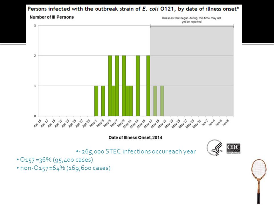 ~265,000 STEC infections occur each year O157 =36% (95,400 cases) non-O157 =64% (169,600 cases)