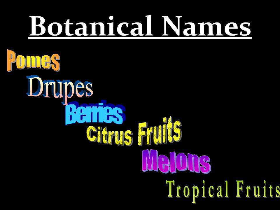 Botanical Names