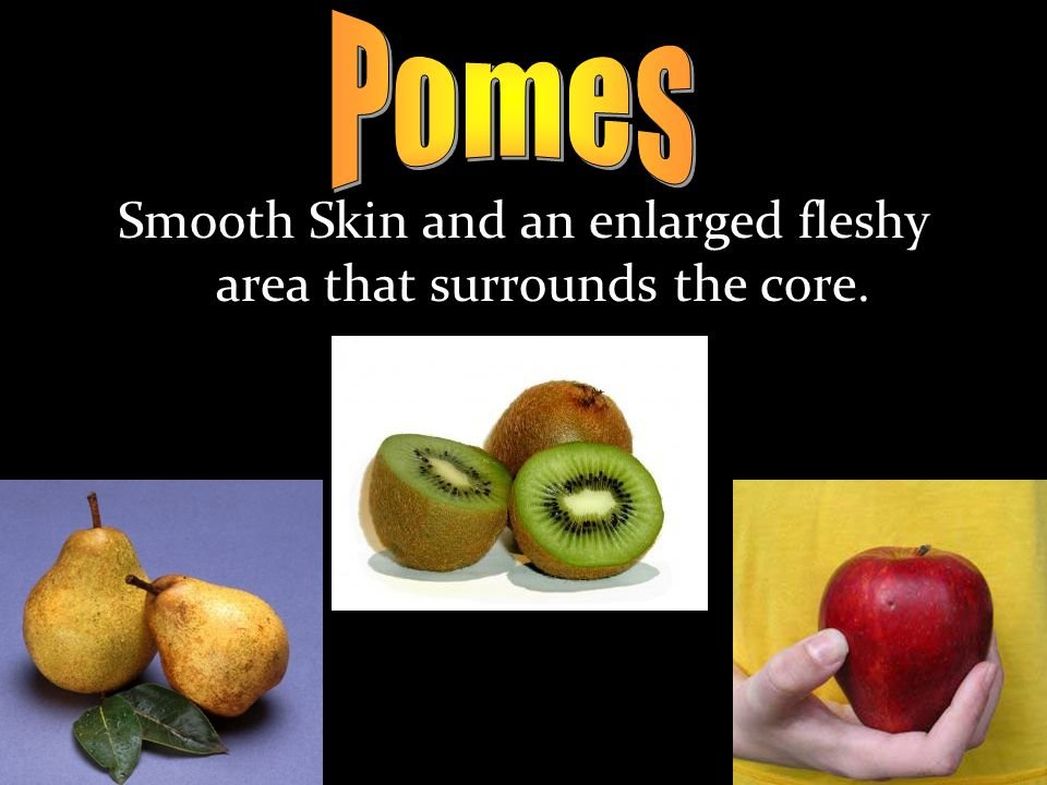 Smooth Skin and an enlarged fleshy area that surrounds the core.