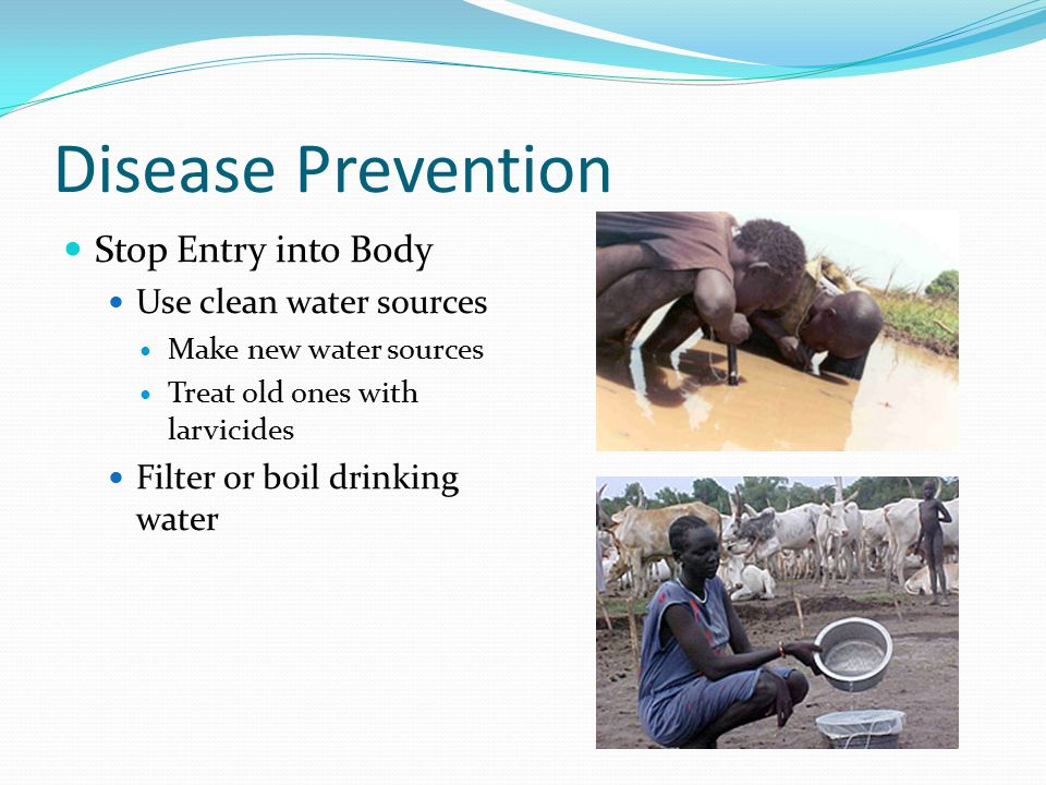 Disease Prevention Stop Entry into Body Use clean water sources Make new water sources Treat old ones with larvicides Filter or boil drinking water