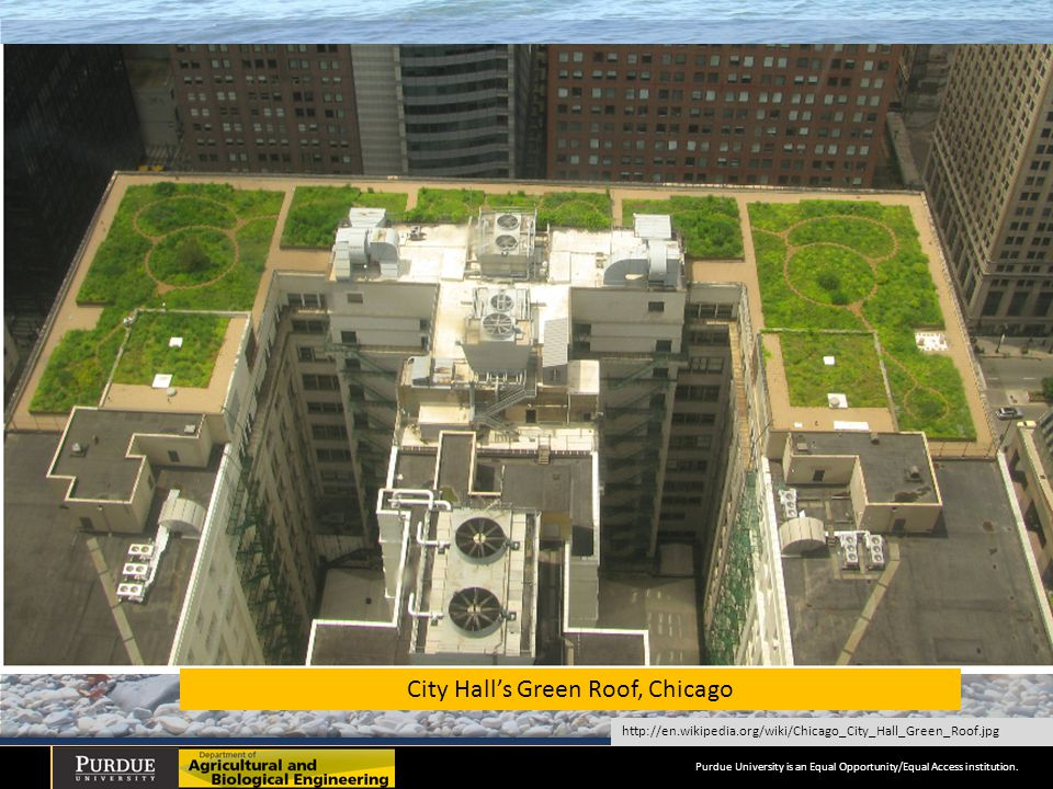 City Hall's Green Roof, Chicago http://en.wikipedia.org/wiki/Chicago_City_Hall_Green_Roof.jpg Purdue University is an Equal Opportunity/Equal Access institution.