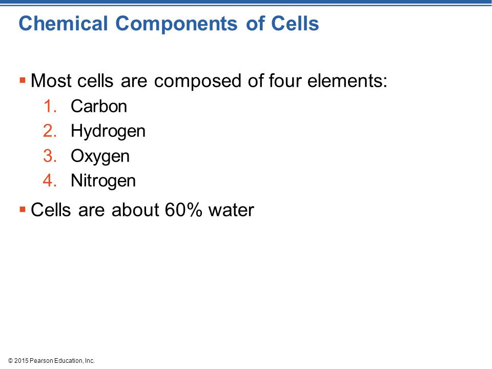 Chemical Components of Cells  Most cells are composed of four elements: 1.Carbon 2.Hydrogen 3.Oxygen 4.Nitrogen  Cells are about 60% water © 2015 Pearson Education, Inc.