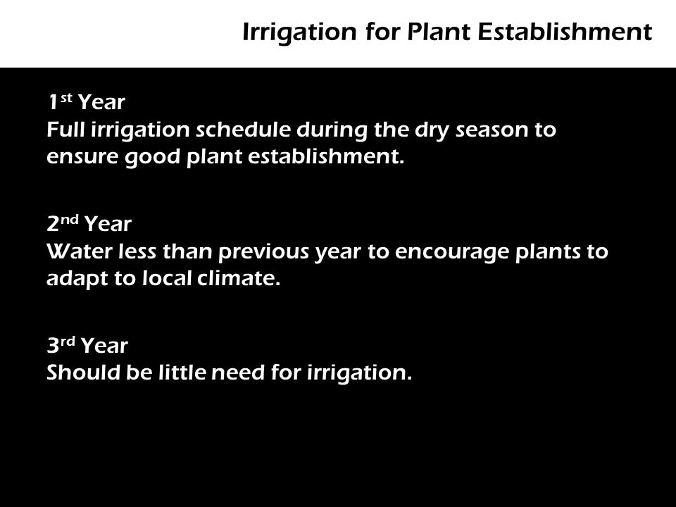 Irrigation for Plant Establishment P 1 st Year Full irrigation schedule during the dry season to ensure good plant establishment.