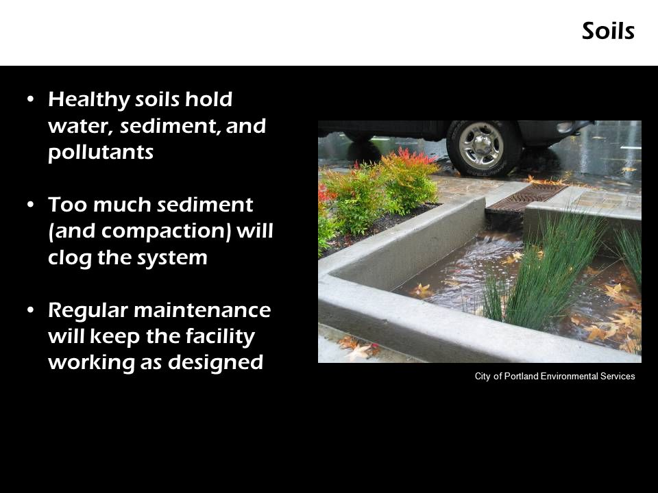 Soils Healthy soils hold water, sediment, and pollutants Too much sediment (and compaction) will clog the system Regular maintenance will keep the facility working as designed City of Portland Environmental Services
