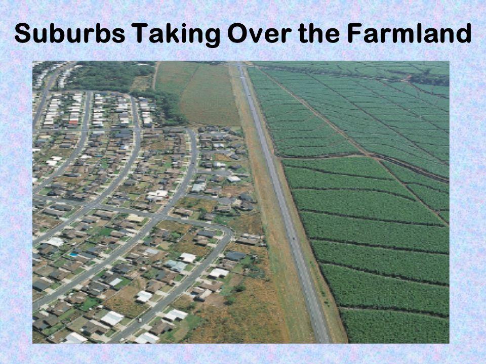 Suburbs Taking Over the Farmland