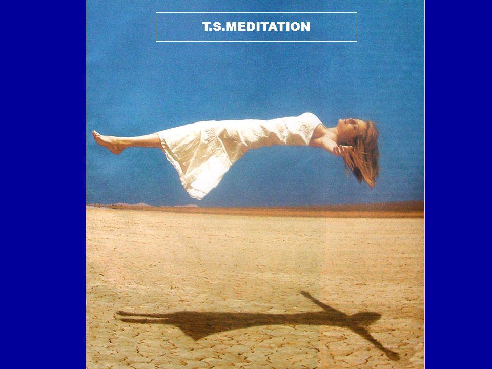 Transcendental Meditation (TM) Movement founded by Maharshi Mahesh Yogi of India.