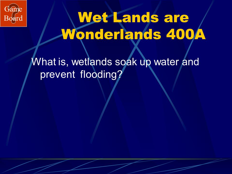 Game Board Wet Lands are Wonderlands 400 A wetland is like a sponge because… Answer