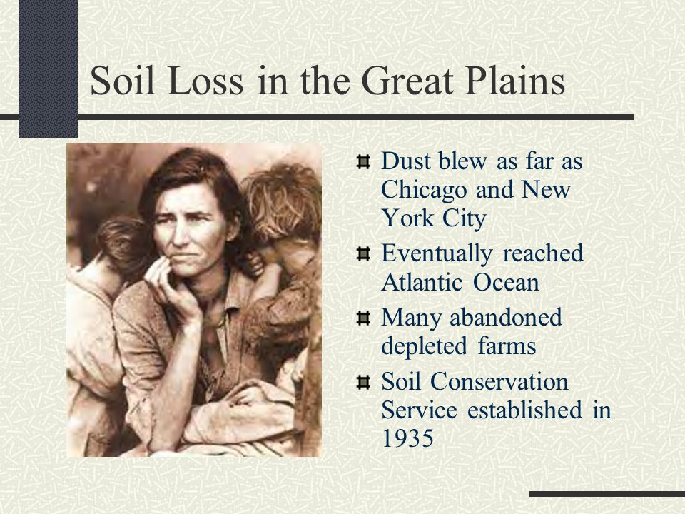 Soil Loss in the Great Plains Dust blew as far as Chicago and New York City Eventually reached Atlantic Ocean Many abandoned depleted farms Soil Conservation Service established in 1935
