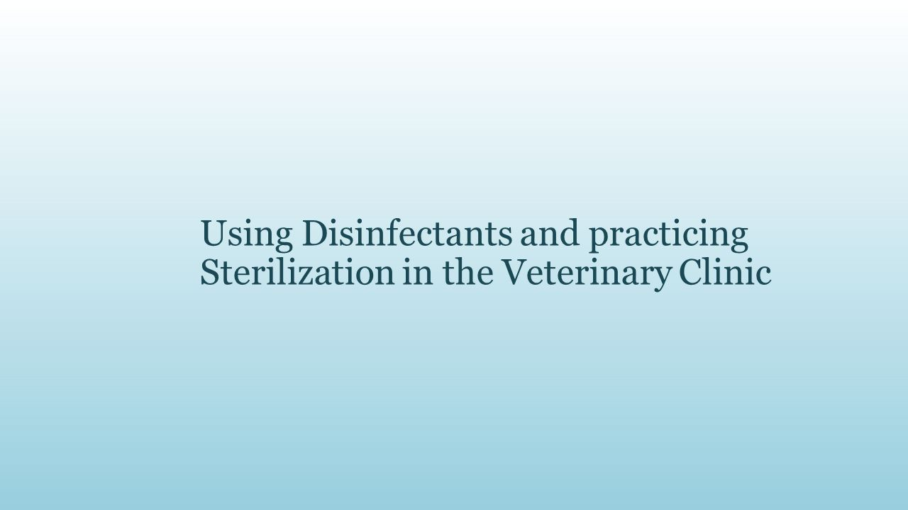 Using Disinfectants and practicing Sterilization in the Veterinary Clinic
