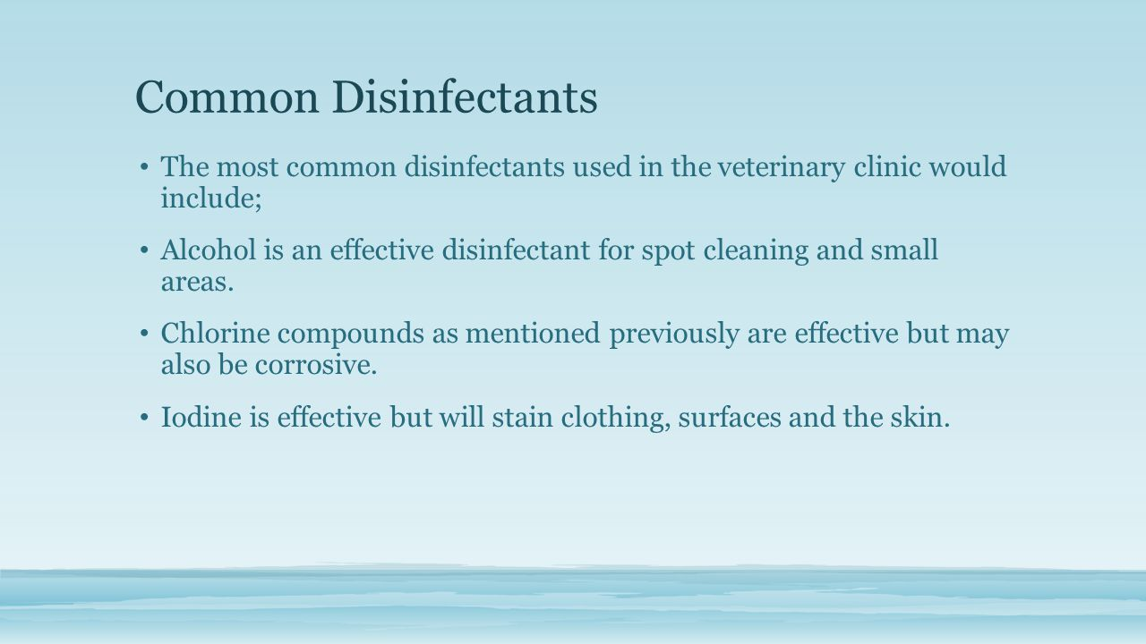 Common Disinfectants The most common disinfectants used in the veterinary clinic would include; Alcohol is an effective disinfectant for spot cleaning and small areas.