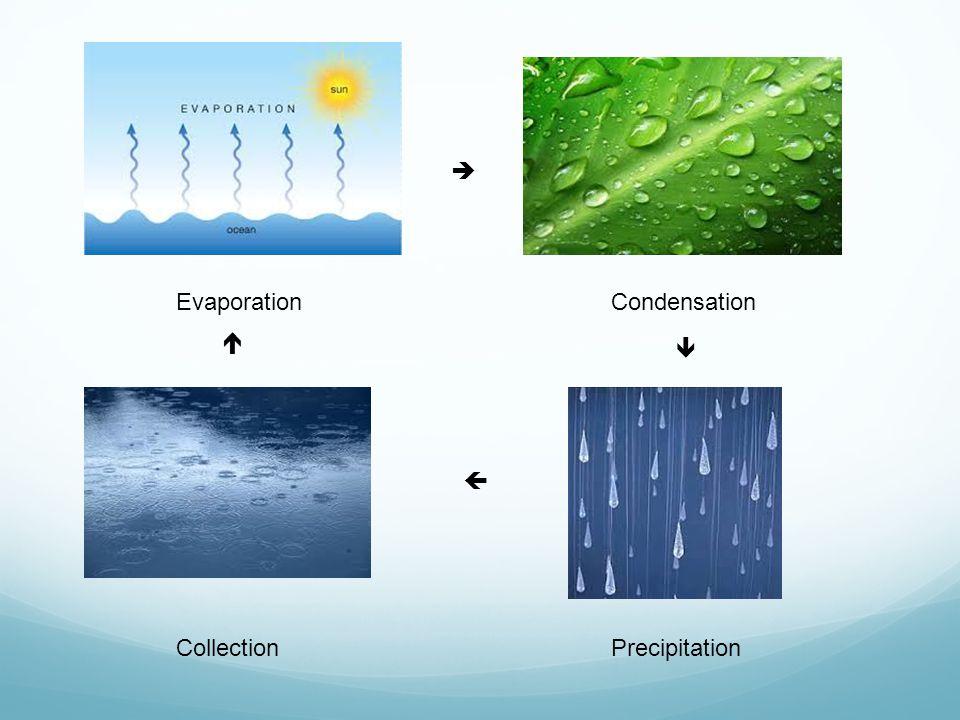 EvaporationCondensation PrecipitationCollection    
