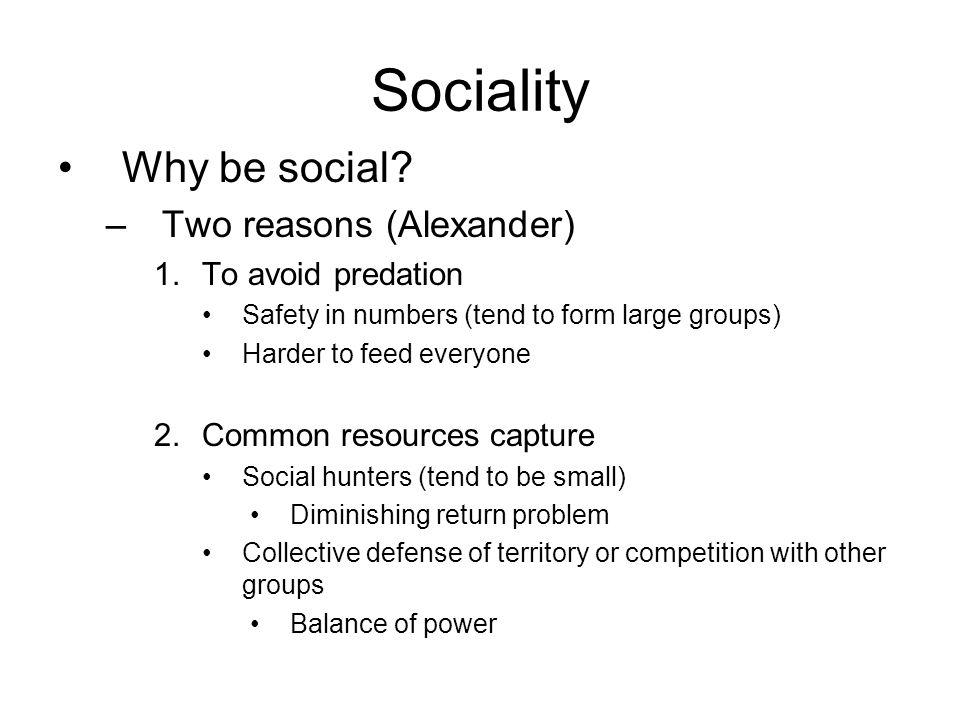 Sociality Why be social.