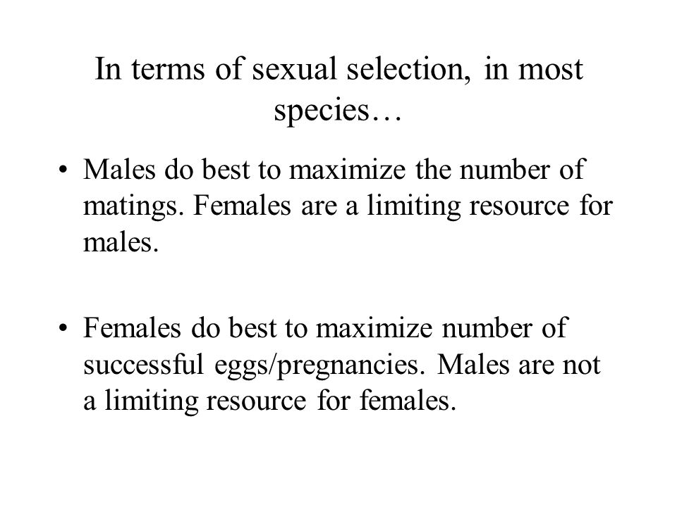 Leads to an asymmetry between the sexes and to conflicts of interest orangutan
