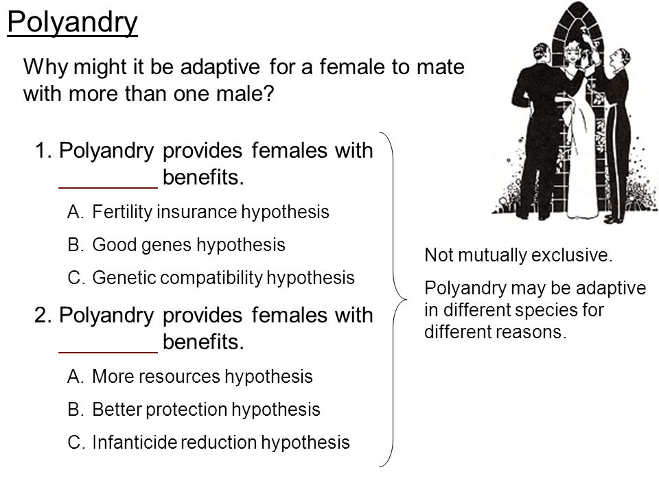 Why might it be adaptive for a female to mate with more than one male? Polyandry 1.Polyandry provides females with ________ benefits. A.Fertility insu