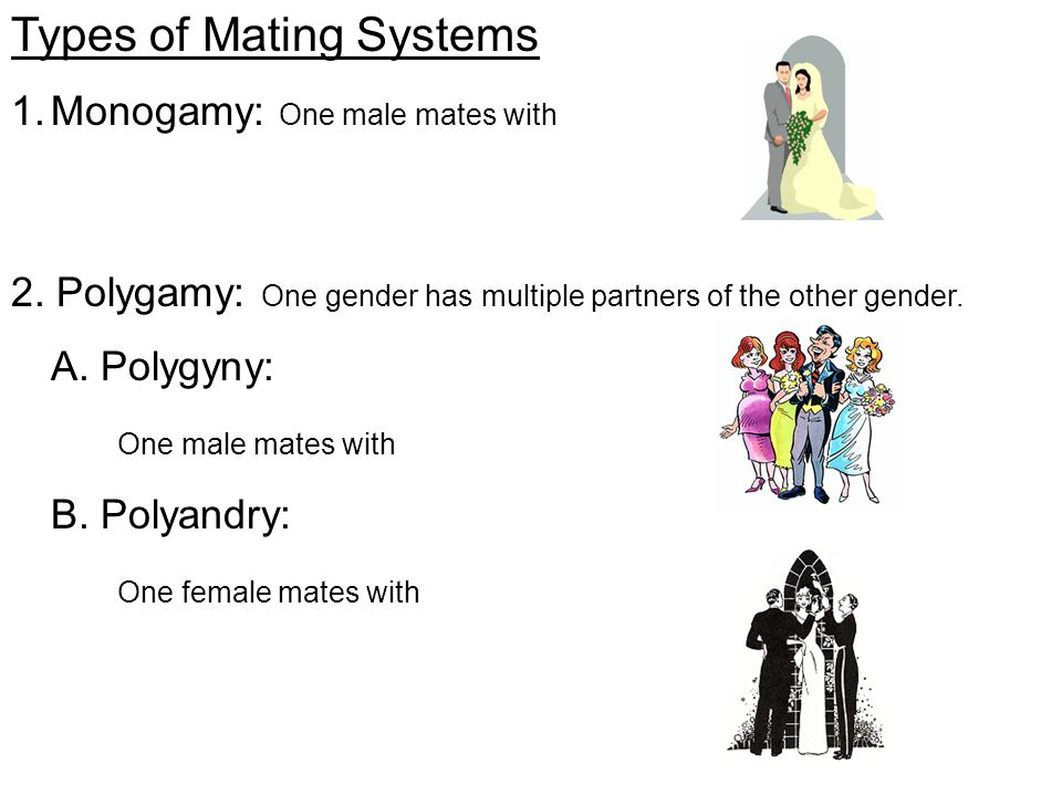 Types of Polygyny: 1.Female defense polygyny 2.Resource defense polygyny 3.Scramble competition polygyny 4.Lek polygyny Polygyny The spatial distribution of _________ and __________ determines what type of polygyny a species will have.