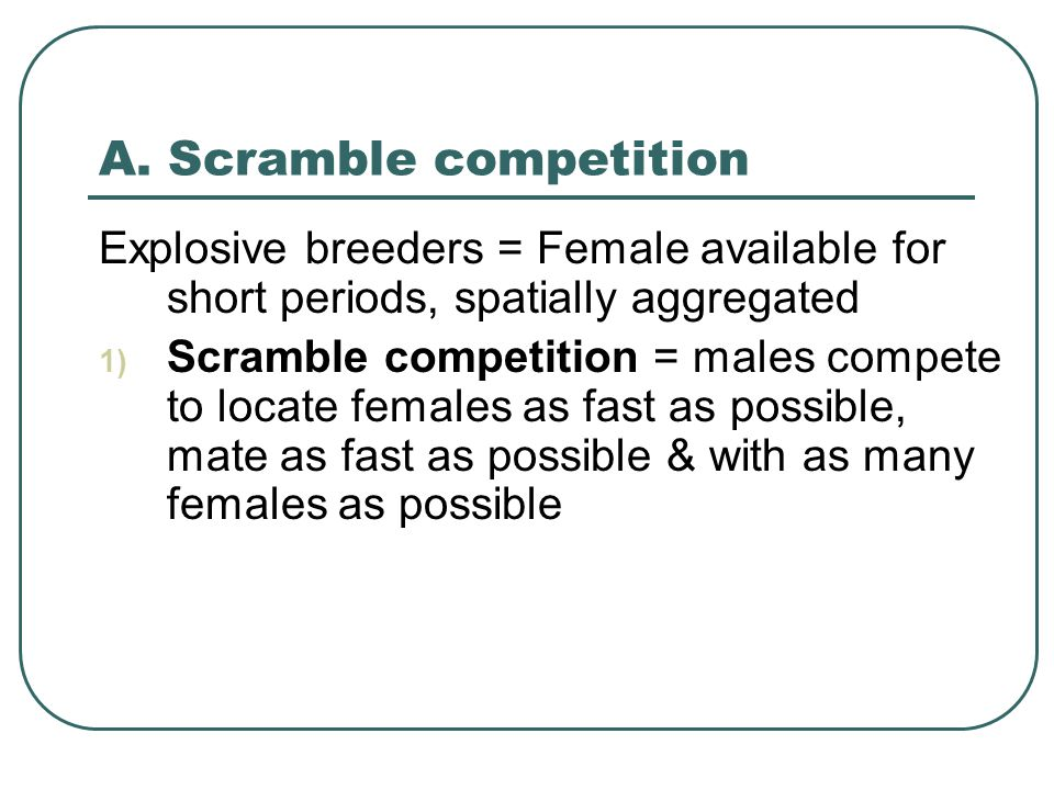 A. Scramble competition Explosive breeders = Female available for short periods, spatially aggregated 1) Scramble competition = males compete to locat