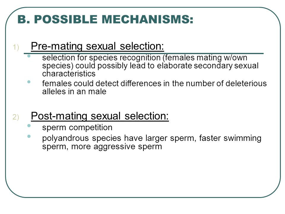 B. POSSIBLE MECHANISMS: 1) Pre-mating sexual selection: selection for species recognition (females mating w/own species) could possibly lead to elabor