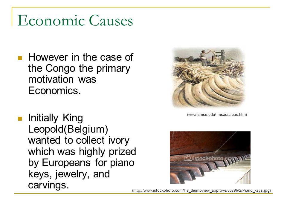 Economic Causes However in the case of the Congo the primary motivation was Economics.