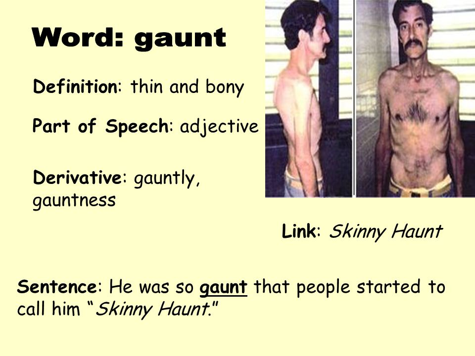 """Definition: thin and bony Derivative: gauntly, gauntness Sentence: He was so gaunt that people started to call him """"Skinny Haunt."""" Part of Speech: adj"""