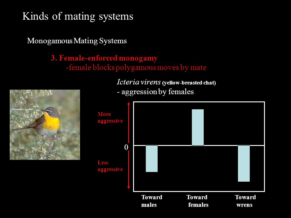 Kinds of mating systems Monogamous Mating Systems 3.