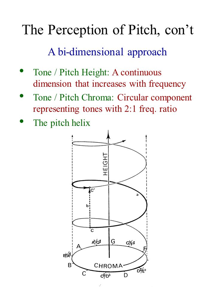 The Perception of Pitch, con't A bi-dimensional approach Tone / Pitch Height: A continuous dimension that increases with frequency Tone / Pitch Chroma: Circular component representing tones with 2:1 freq.