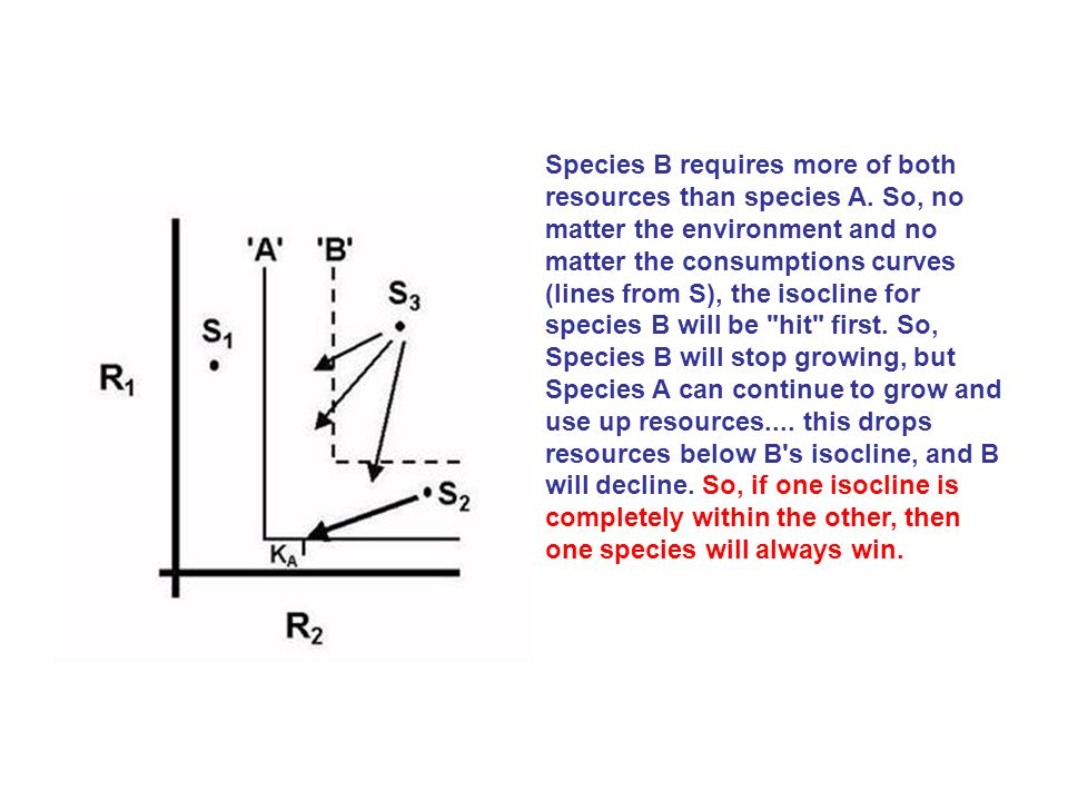 If the isoclines intersect, coexistence is possible (there are densities where both species are equilibrating at values > 1).