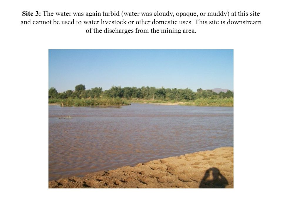 Site 3: The water was again turbid (water was cloudy, opaque, or muddy) at this site and cannot be used to water livestock or other domestic uses.