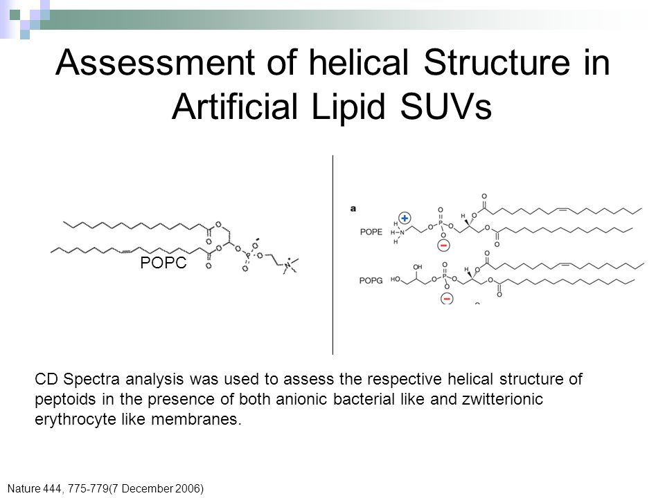 Assessment of helical Structure in Artificial Lipid SUVs POPC CD Spectra analysis was used to assess the respective helical structure of peptoids in t