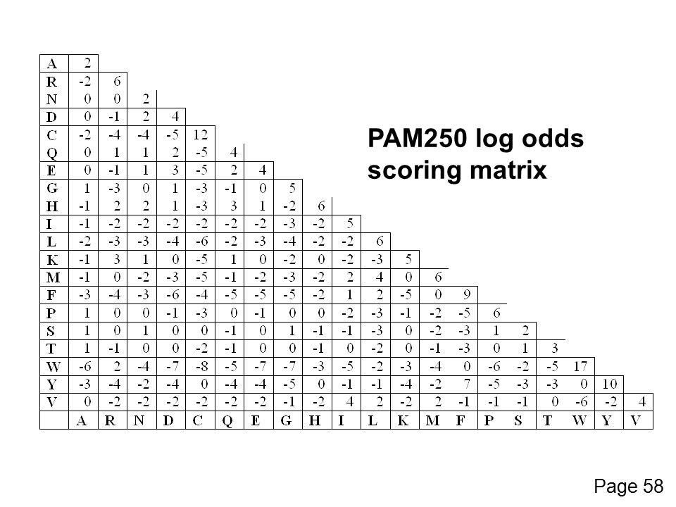 PAM250 log odds scoring matrix Page 58