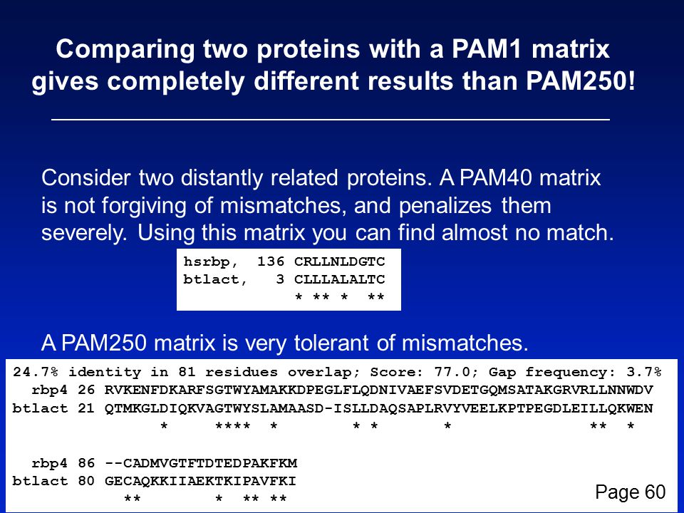 Comparing two proteins with a PAM1 matrix gives completely different results than PAM250.