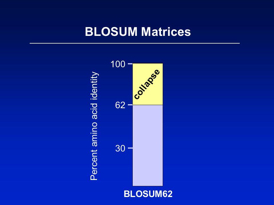 BLOSUM Matrices 100 62 30 Percent amino acid identity BLOSUM62 collapse
