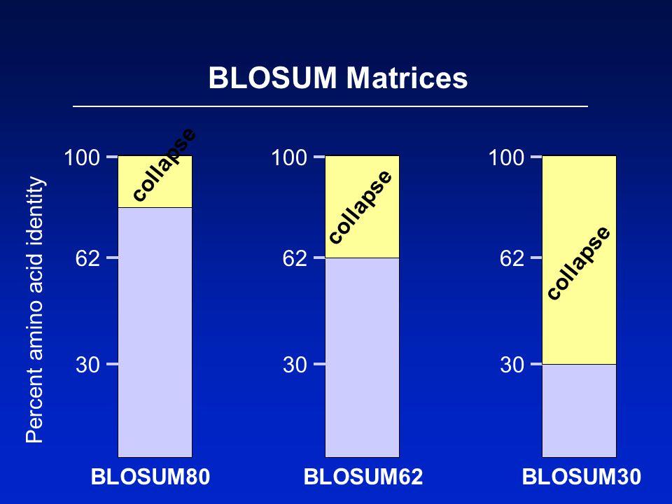 BLOSUM Matrices 100 62 30 Percent amino acid identity BLOSUM62 100 62 30 BLOSUM30 100 62 30 BLOSUM80 collapse