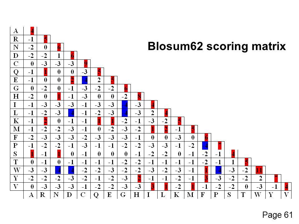 Blosum62 scoring matrix Page 61