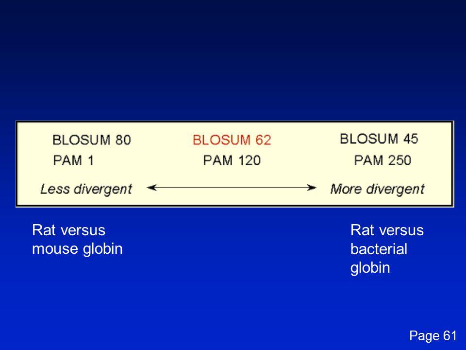 Rat versus mouse globin Rat versus bacterial globin Page 61