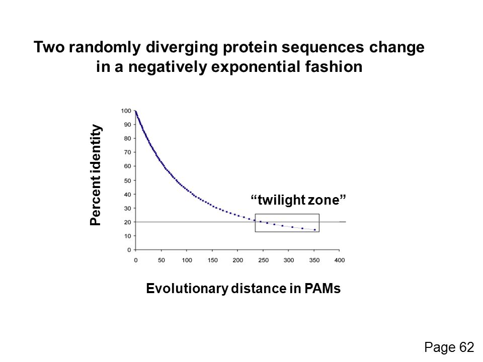 Percent identity Evolutionary distance in PAMs Two randomly diverging protein sequences change in a negatively exponential fashion twilight zone Page 62
