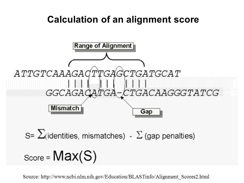 Calculation of an alignment score Source: http://www.ncbi.nlm.nih.gov/Education/BLASTinfo/Alignment_Scores2.html