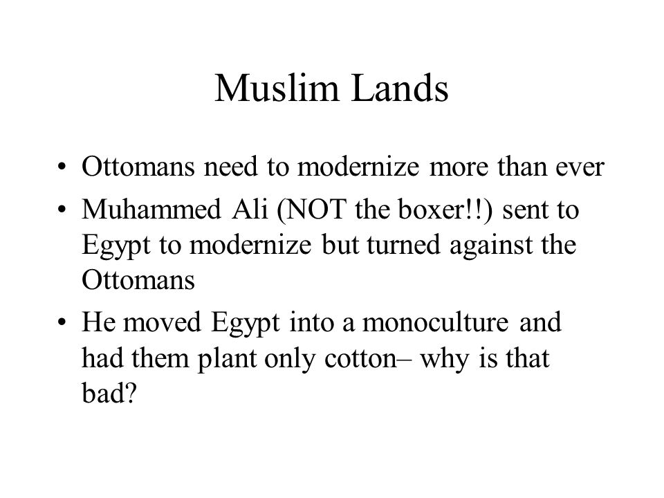 Muslim Lands Ottomans need to modernize more than ever Muhammed Ali (NOT the boxer!!) sent to Egypt to modernize but turned against the Ottomans He mo