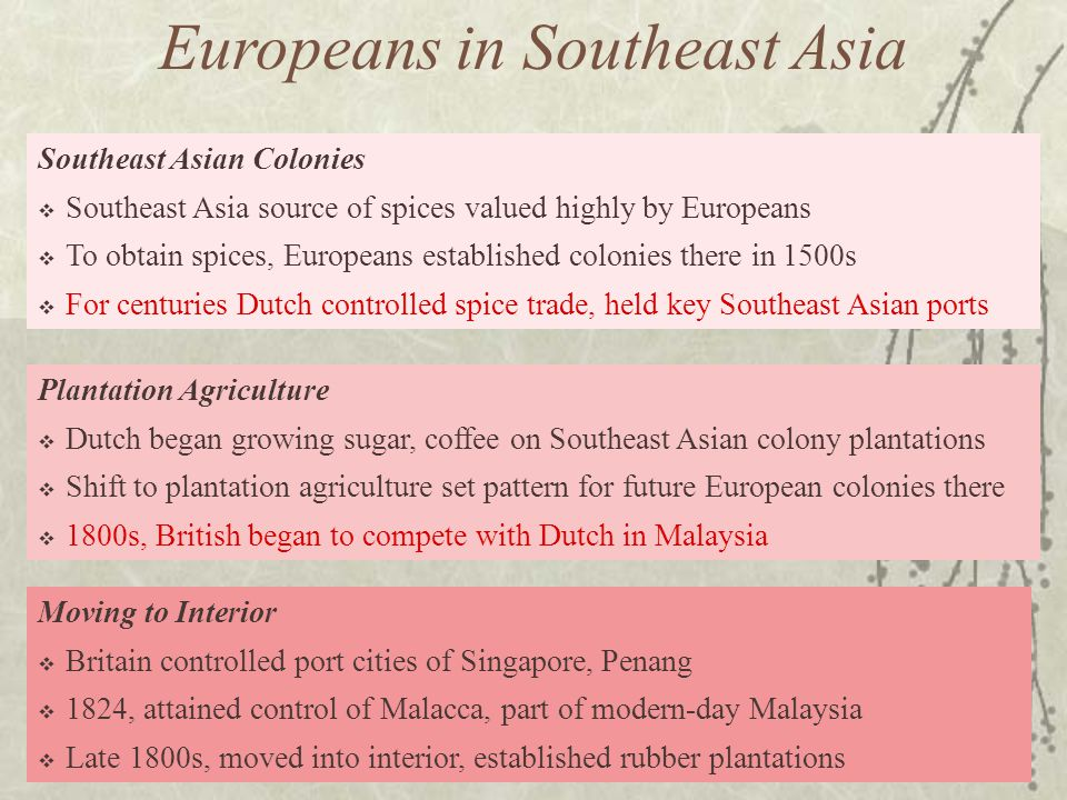 Southeast Asian Colonies  Southeast Asia source of spices valued highly by Europeans  To obtain spices, Europeans established colonies there in 1500s  For centuries Dutch controlled spice trade, held key Southeast Asian ports Moving to Interior  Britain controlled port cities of Singapore, Penang  1824, attained control of Malacca, part of modern-day Malaysia  Late 1800s, moved into interior, established rubber plantations Plantation Agriculture  Dutch began growing sugar, coffee on Southeast Asian colony plantations  Shift to plantation agriculture set pattern for future European colonies there  1800s, British began to compete with Dutch in Malaysia Europeans in Southeast Asia