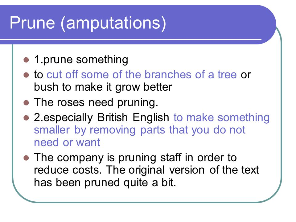 Prune (amputations) 1.prune something to cut off some of the branches of a tree or bush to make it grow better The roses need pruning. 2.especially Br