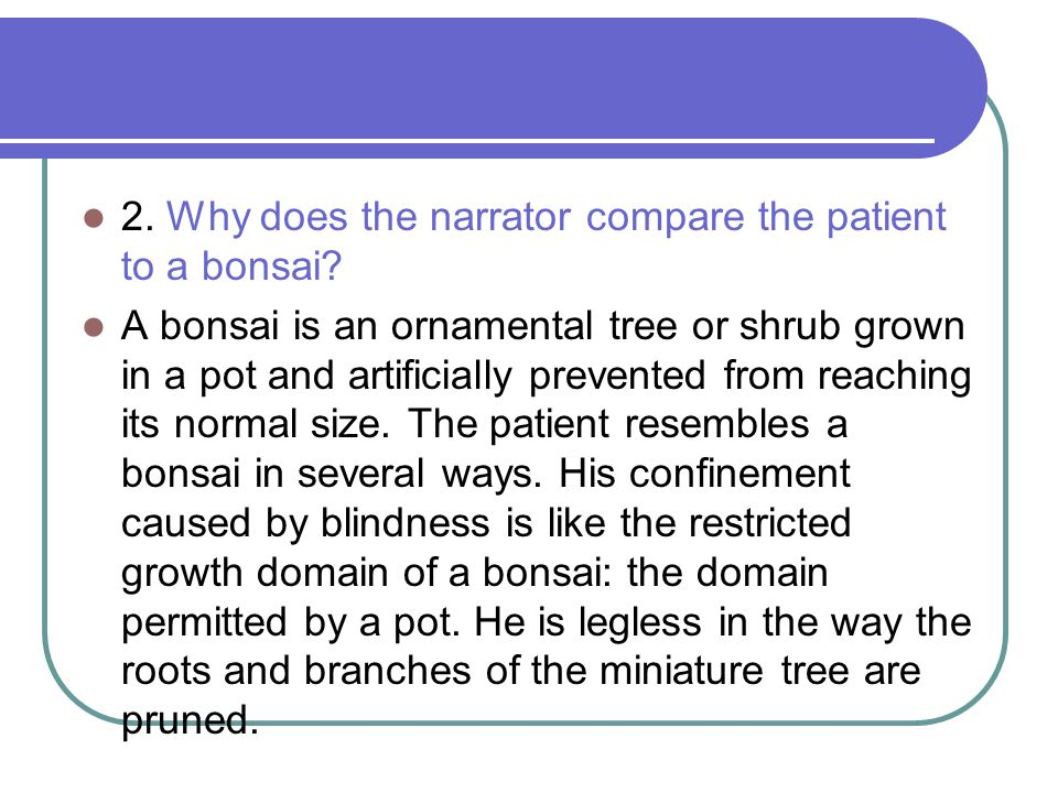 2. Why does the narrator compare the patient to a bonsai? A bonsai is an ornamental tree or shrub grown in a pot and artificially prevented from reach